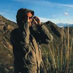 Наблюдение (Birdwatching)